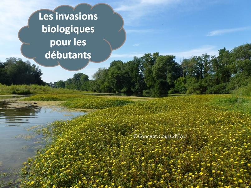 108_invasions